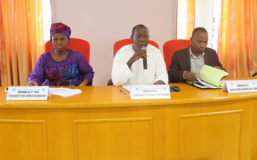 Nakanbé Water Agency: The Basin Committee held its 2019 Ordinary Session
